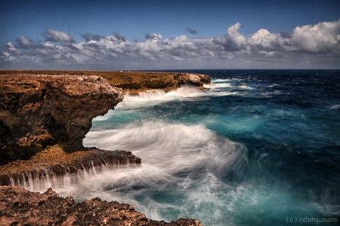 Bonaire Boka Olivia