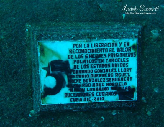 Wreck Bay of Pigs