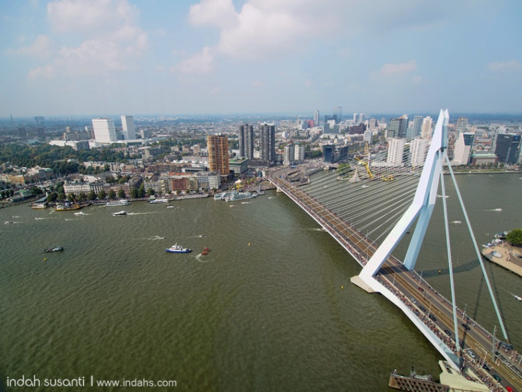 Erasmus Bridge view