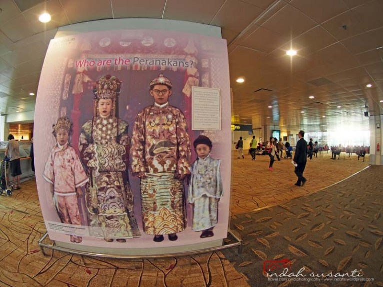 Changi - Singapore Airport