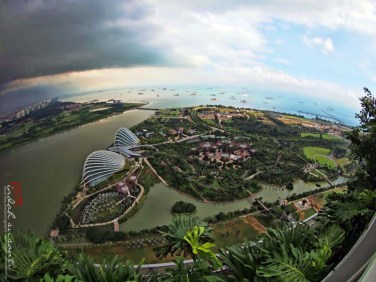 Bird View of Singapore