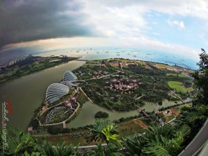 Aerial View of Gardens by the Bay