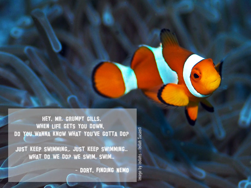 Finding Nemo Quote
