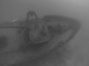Shipwrecks Sal Island