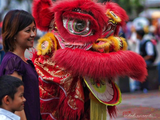 Lion Dancer