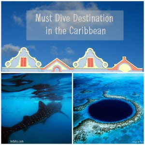 Must Dive Destination Caribbean Instagram