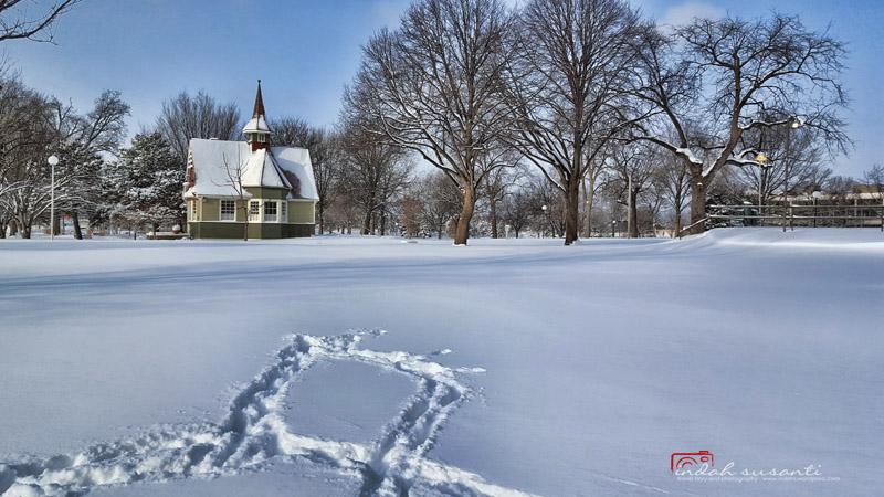 The winter in Minneapolis