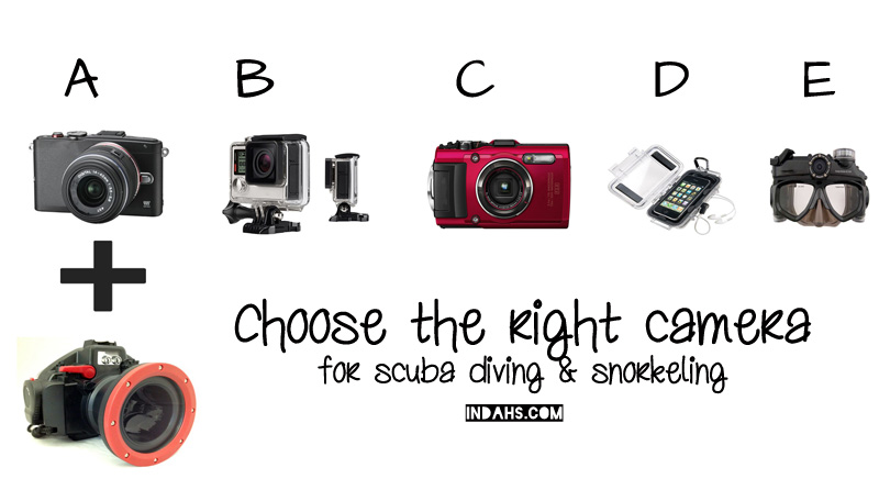 choose the right camera wordpress