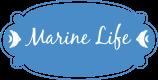 Marine Life medium