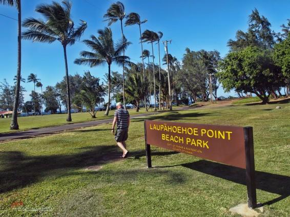 Laupahoehoe Beach Park