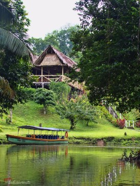 Our eco-resort, in the middle of the jungle