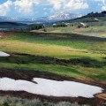 Yellowstone: Hayden Valley