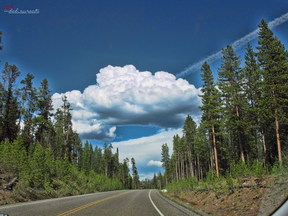 Yellowstone - Roadtrip