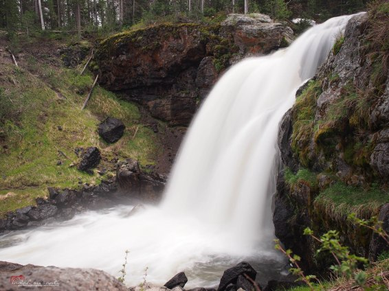 Waterfalls - Moose Falls